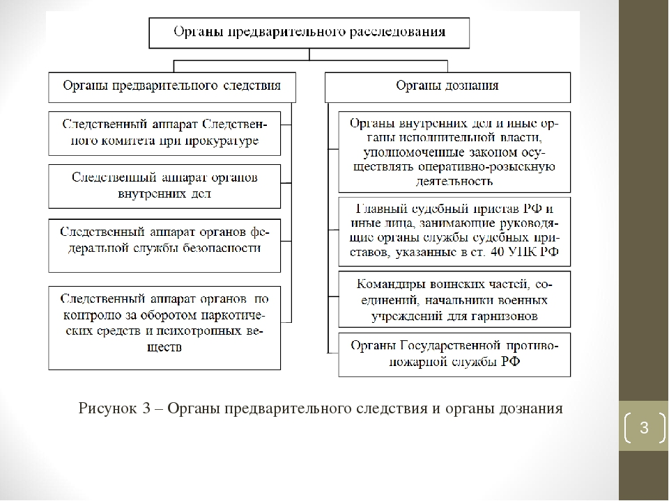 Процессуальные Формы Взаимодействия Следователей И Органа Дознания Шпаргалка
