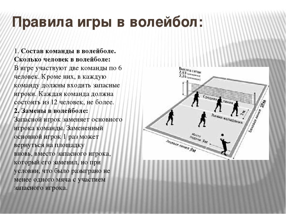 Правила игры в волейбол: 1.Состав команды в волейболе. Сколько человек в вол...