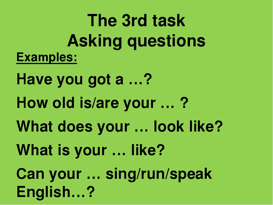 The 3rd task Asking questions Examples: Have you got a …? How old is/are your...