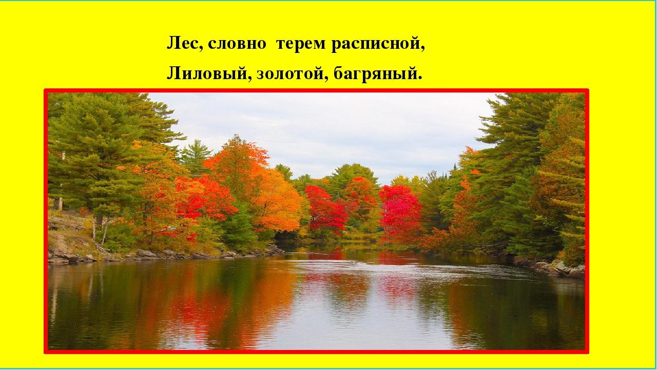 Лес, словно терем расписной, Лиловый, золотой, багряный.
