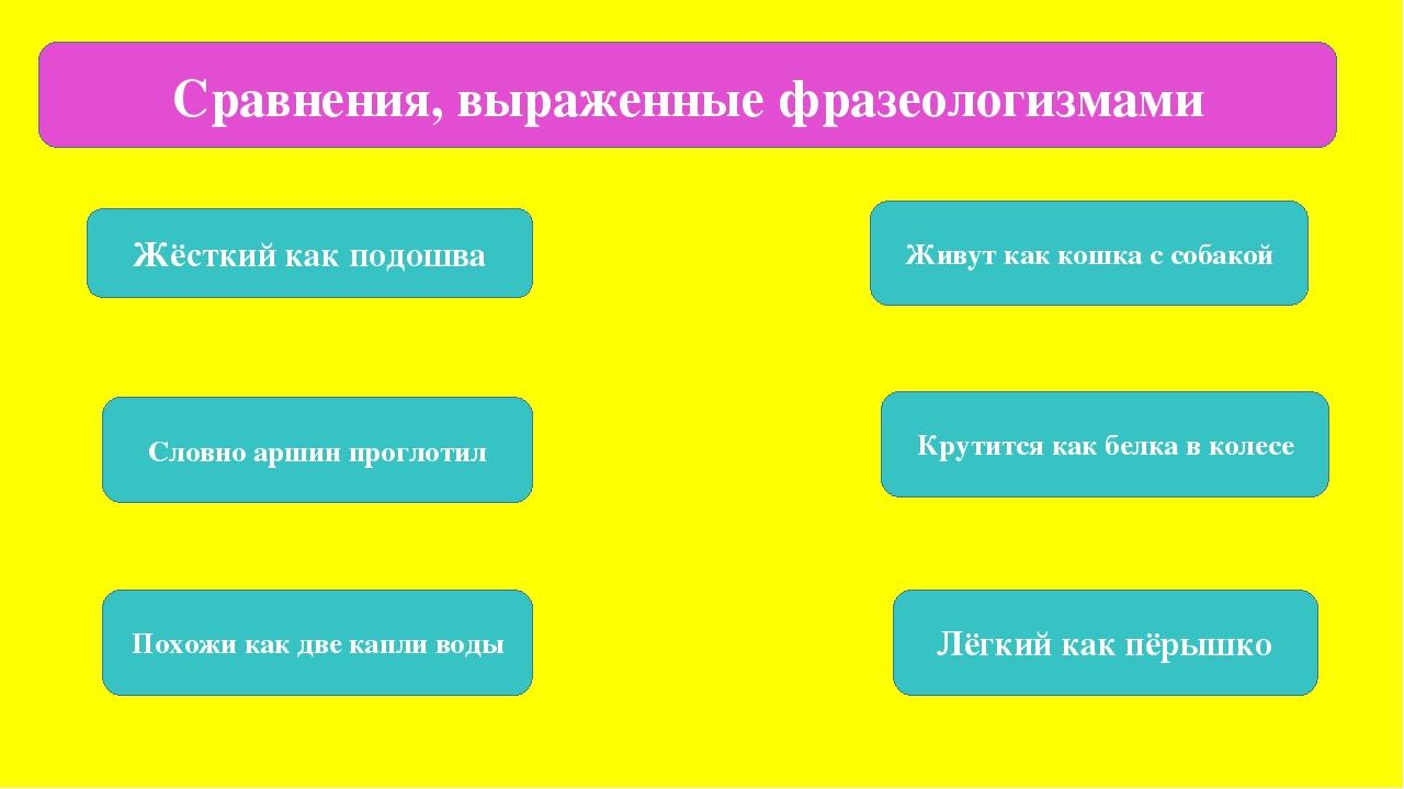 Сравнения, выраженные фразеологизмами Жёсткий как подошва Живут как кошка с...