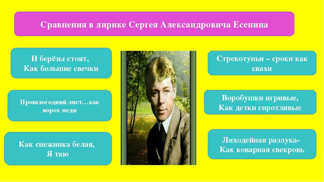 Сравнения в лирике Сергея Александровича Есенина И берёзы стоят, Как большие...