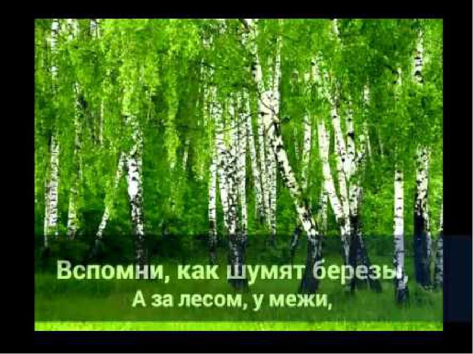 ОТ ЧЕГО ТАК В РОССИИ БЕРЕЗЫ ШУМЯТ СКАЧАТЬ БЕСПЛАТНО