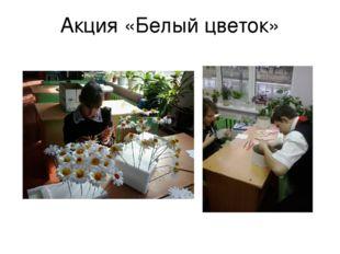 Акция «Белый цветок»