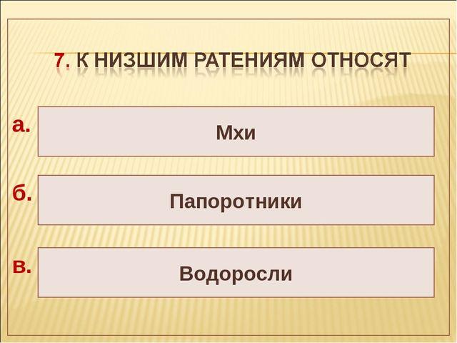 Папоротники Водоросли Мхи а. б. в.