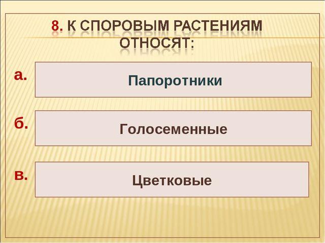 Голосеменные Цветковые Папоротники а. б. в.