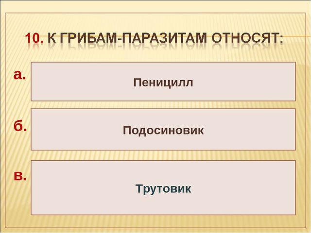 Пеницилл Подосиновик Трутовик а. б. в.