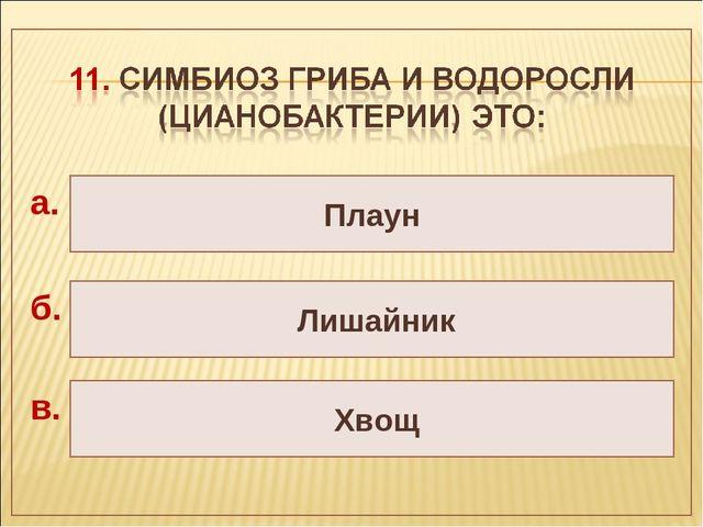 Плаун Лишайник Хвощ а. б. в.
