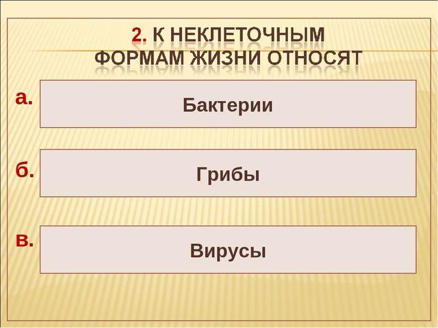 Вирусы Грибы Бактерии а. б. в.