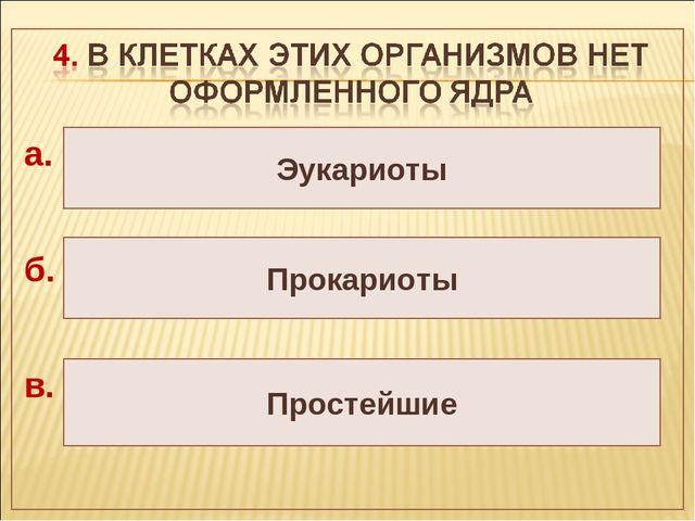Простейшие Прокариоты Эукариоты а. б. в.
