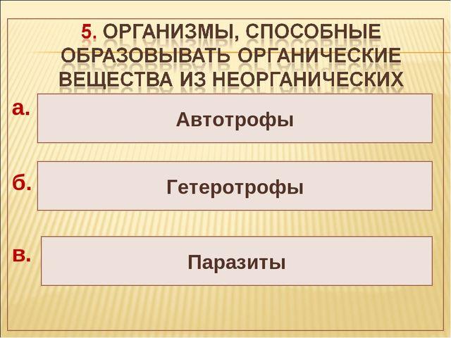 Автотрофы Гетеротрофы Паразиты а. б. в.