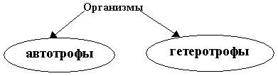 hello_html_m45ba5039.jpg