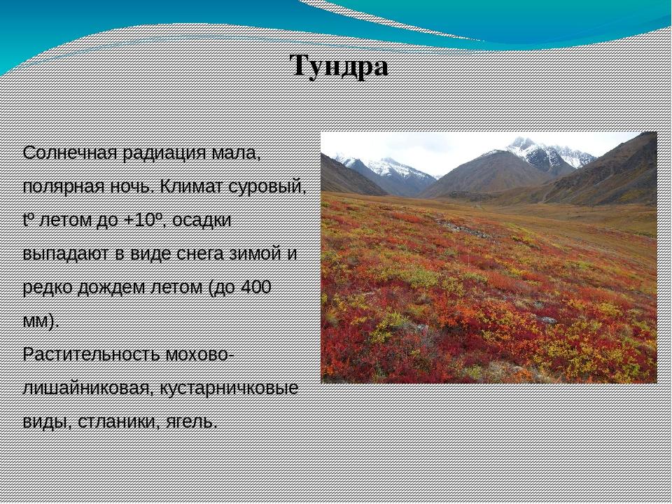 Природными зонами россии знакомство презентация с