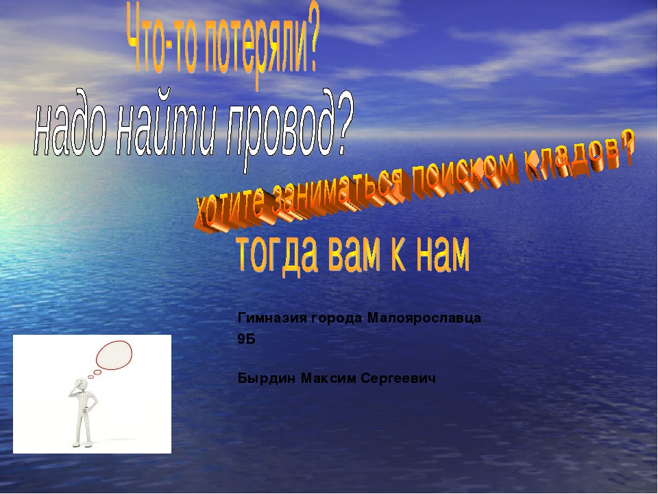 Гимназия города Малоярославца 9Б Бырдин Максим Сергеевич