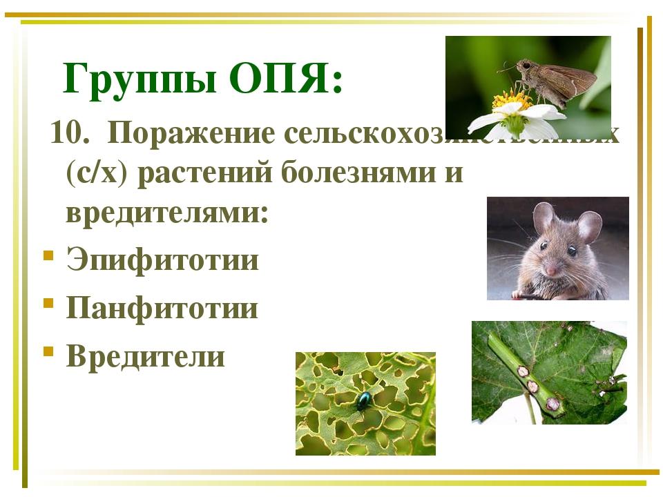 Группы ОПЯ: 10. Поражение сельскохозяйственных (с/х) растений болезнями и вр...