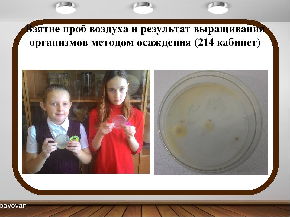Взятие проб воздуха и результат выращивания организмов методом осаждения (214...