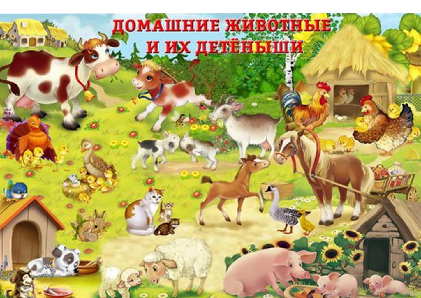 Картинки про домашних животных и диких
