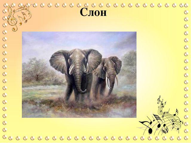 Сен санс слон скачать бесплатно mp3