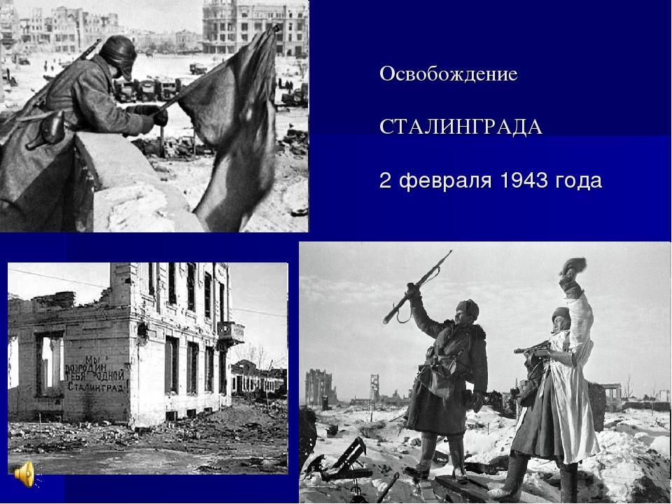 Животных, освобождение сталинграда открытки
