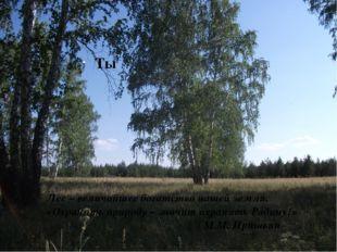 Ты Лес – величайшее богатство нашей земли. «Охранять природу – значит охраня