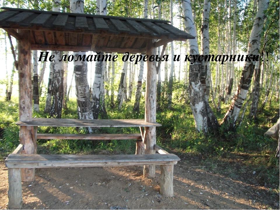 Не загрязняйте водоёмы! Не ломайте деревья и кустарники!!