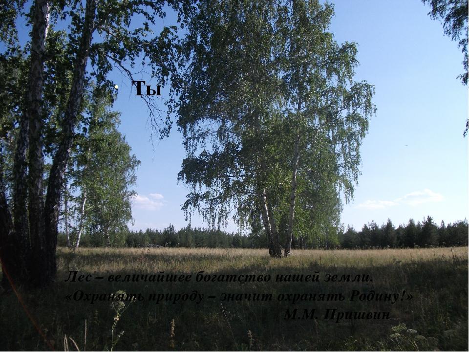 Ты Лес – величайшее богатство нашей земли. «Охранять природу – значит охраня...