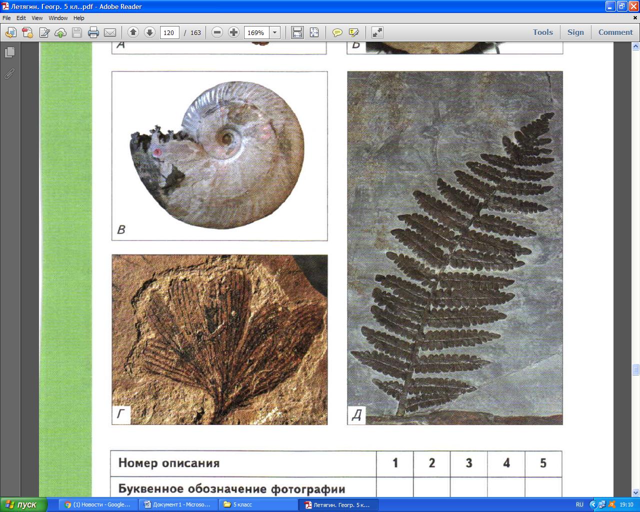 Контрольная работа по географии по теме Биосфера в формате ГИА  Контрольная работа по географии по теме Биосфера в формате ГИА 5 класс