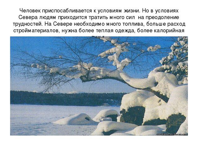 Человек приспосабливается к условиям жизни. Но в условиях Севера людям  приход. 5d139c456d8