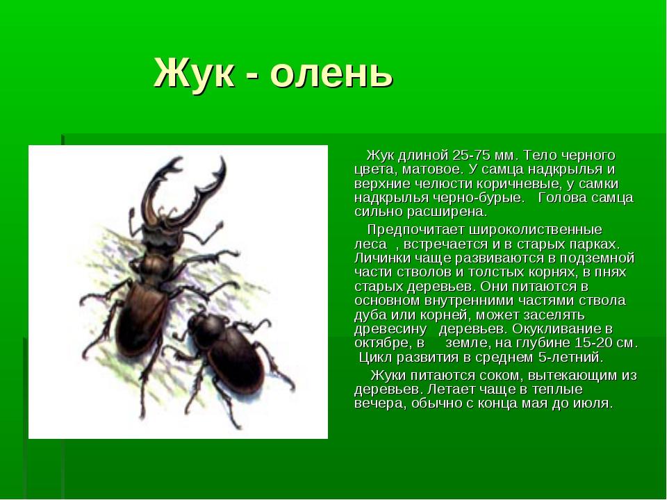 Жуки из красной книги россии фото и описание