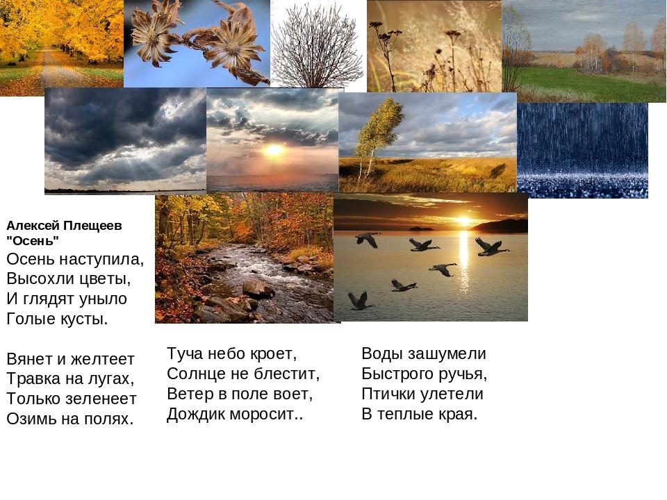 задержка картинки к стихотворению осень наступила помню обрезание