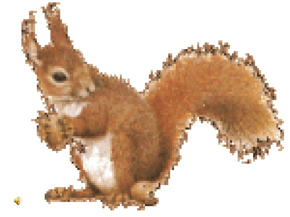 Крестинами, картинка анимация белочка с орешками