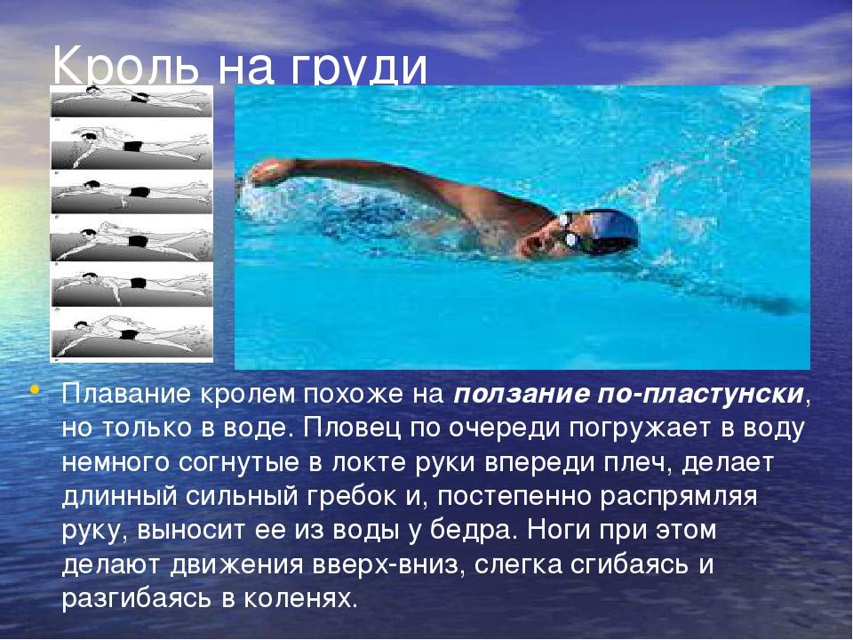 считает стили плавания фото и описание бухта