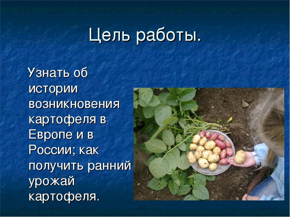 Цель работы. Узнать об истории возникновения картофеля в Европе и в России; к...
