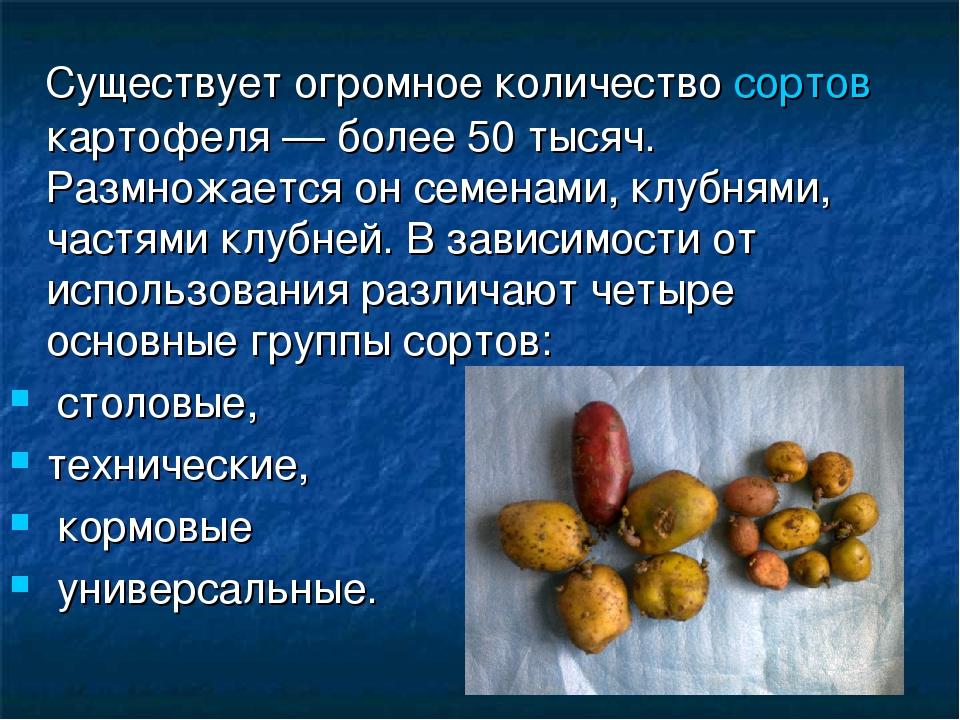 Существует огромное количество сортов картофеля — более 50 тысяч. Размножает...