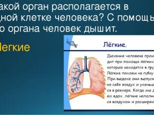 6. Какой орган располагается в грудной клетке человека? С помощью этого орган