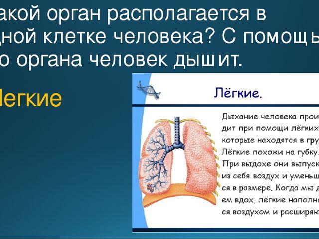 6. Какой орган располагается в грудной клетке человека? С помощью этого орган...