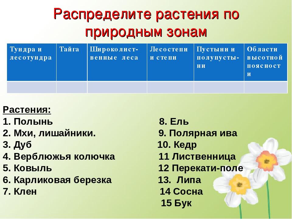 Распределите растения по природным зонам Растения: 1. Полынь 8. Ель 2. Мхи, л...