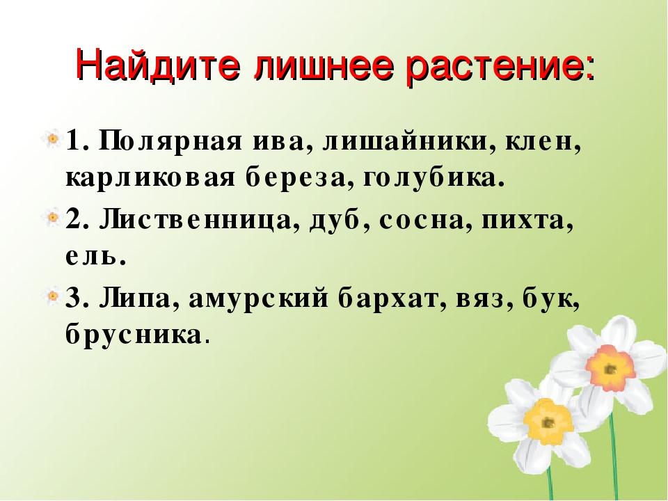 Найдите лишнее растение: 1. Полярная ива, лишайники, клен, карликовая береза,...