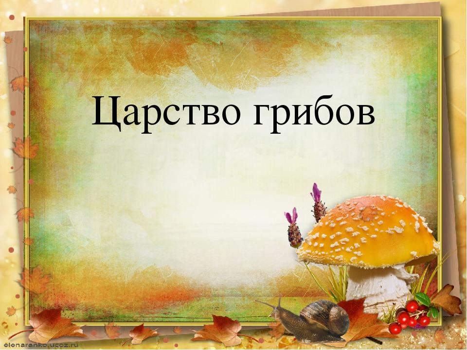 Царство грибов картинки с надписями