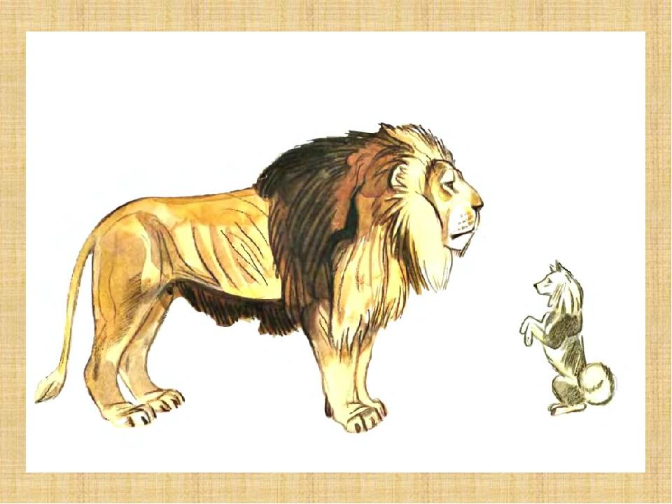 картинки карандашом лев и собачка сельской местности моими