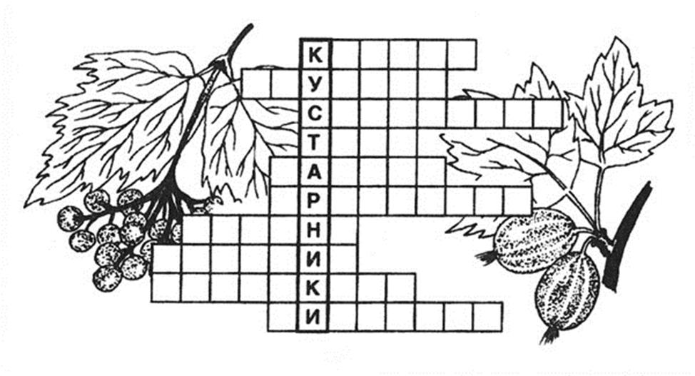 Кроссворды о растениях в картинках разукрашки юбилеем другу