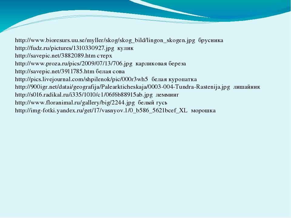 http://www.bioresurs.uu.se/myller/skog/skog_bild/lingon_skogen.jpg брусника...