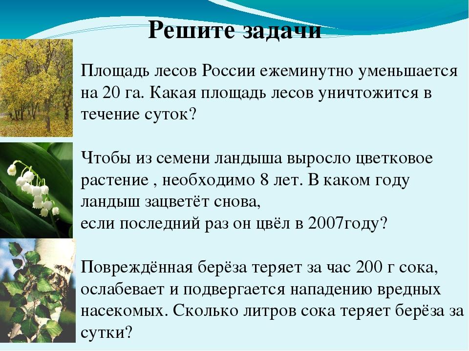 Решите задачи Площадь лесов России ежеминутно уменьшается на 20 га. Какая пло...