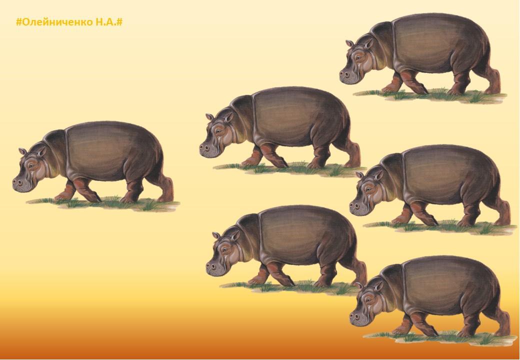 Один-много картинки животные