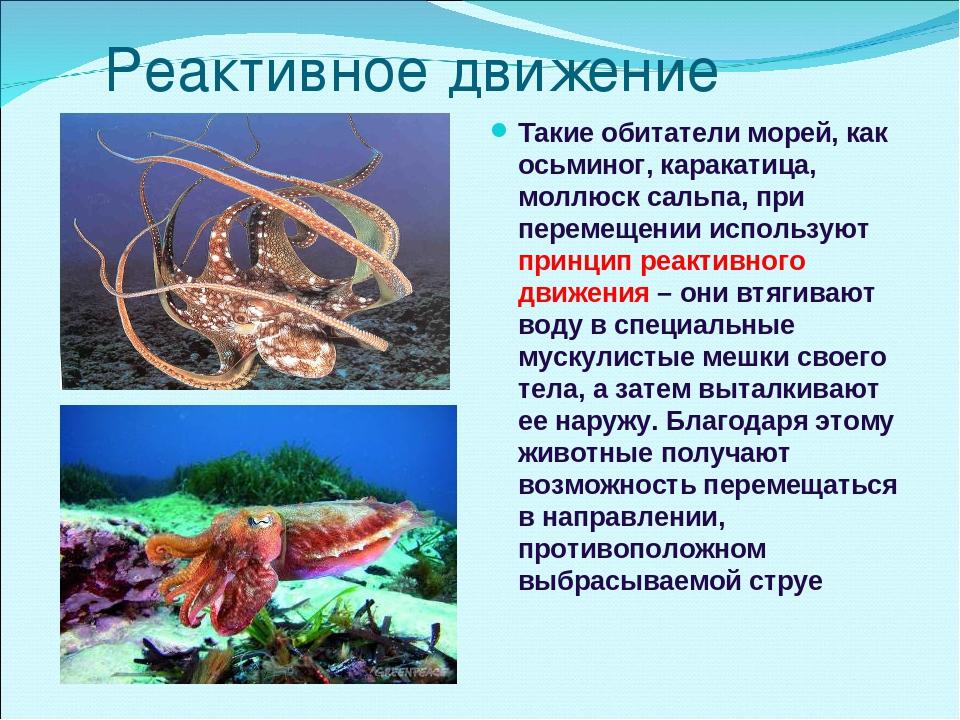Реактивное движение Такие обитатели морей, как осьминог, каракатица, моллюск...