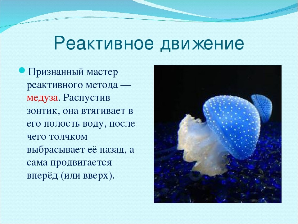 Реактивное движение Признанный мастер реактивного метода — медуза. Распустив...