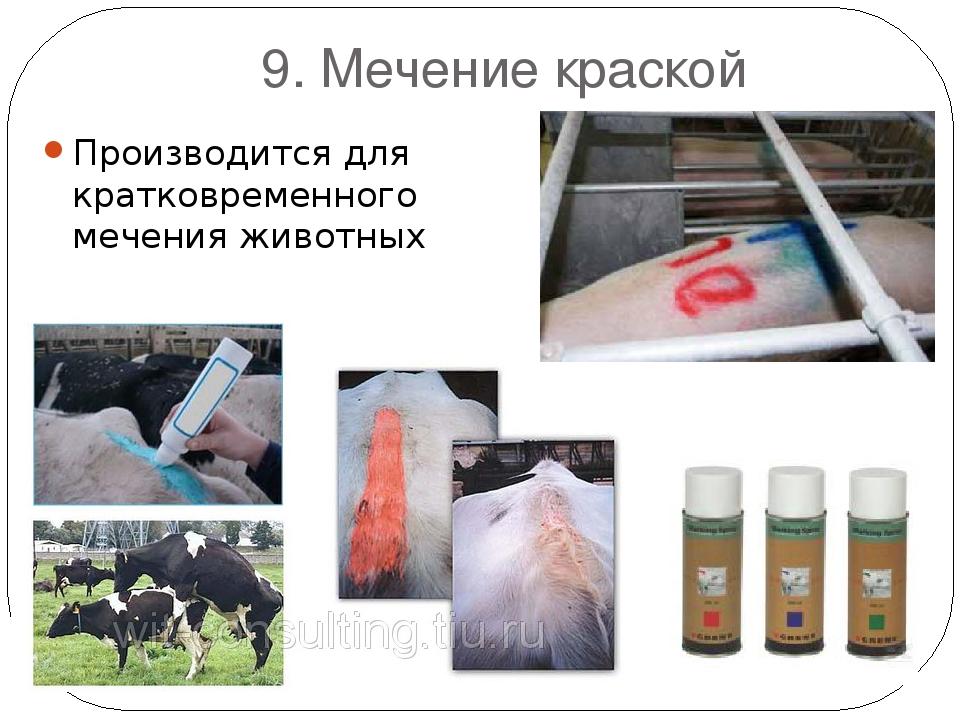 9. Мечение краской Производится для кратковременного мечения животных