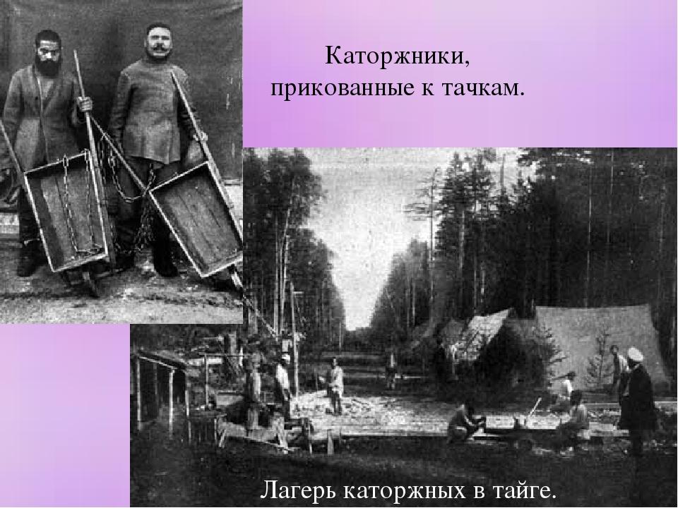 Лагерь каторжных в тайге. Каторжники, прикованные к тачкам.