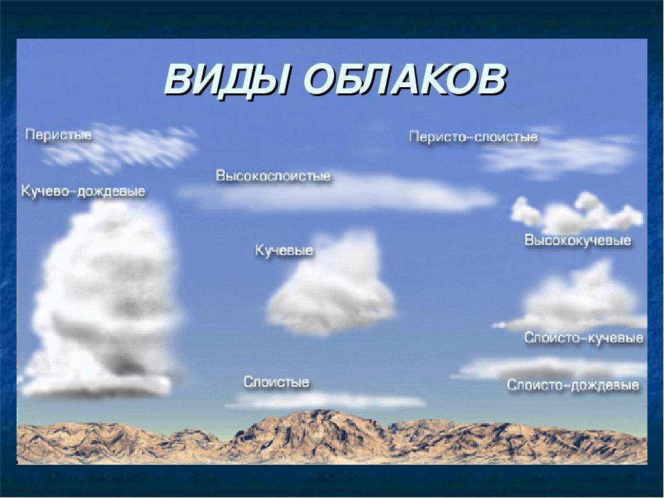 мужчин виды облаков фото и название медведь