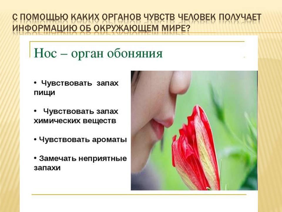 hello_html_m43406719.jpg